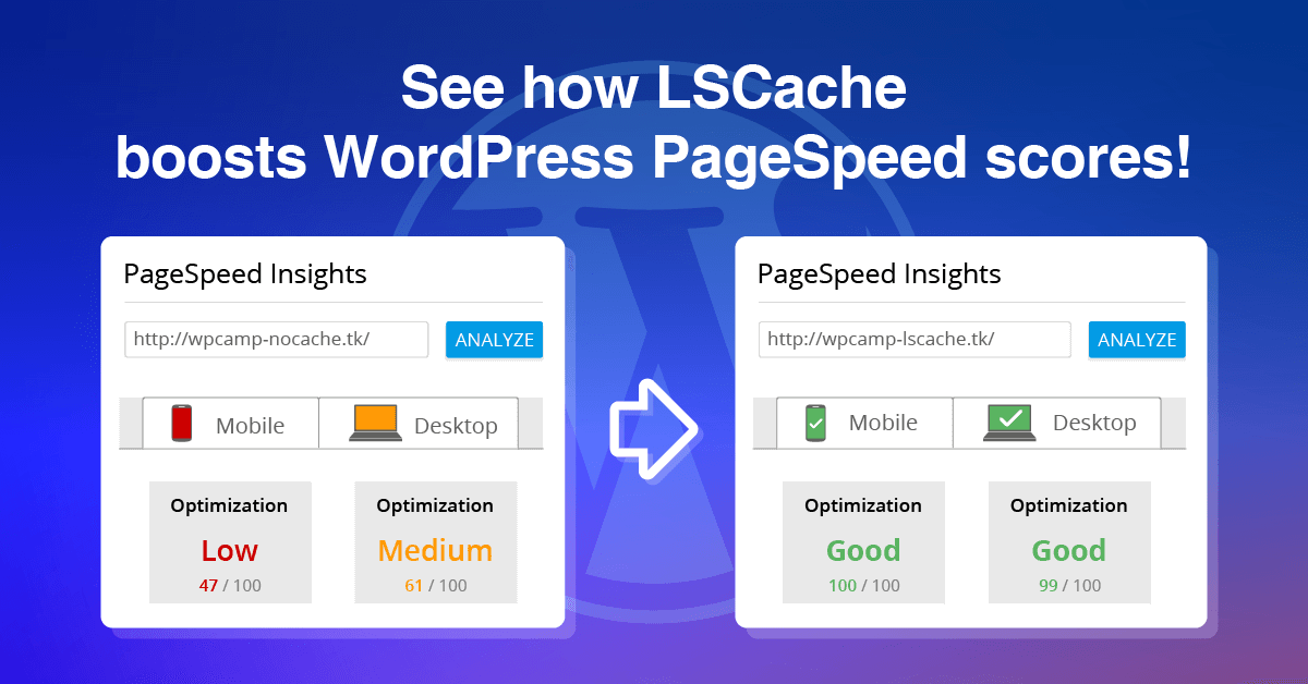 LiteSpeed Cache improves your PageSpeed score