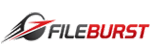 Fileburst
